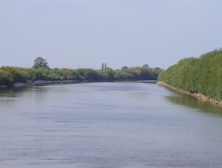 River Trent from the path