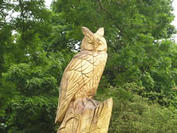 carving of barn owl on The Green