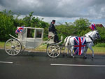 Horses and carriage courtesy of Pegasus Horse and Carriage Masters of Saundby