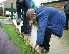 Planting a Willow Fence